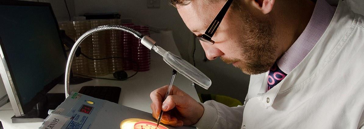 Legionella Testing And Analysis In Lab